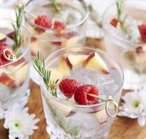 Special Gin and Tonic