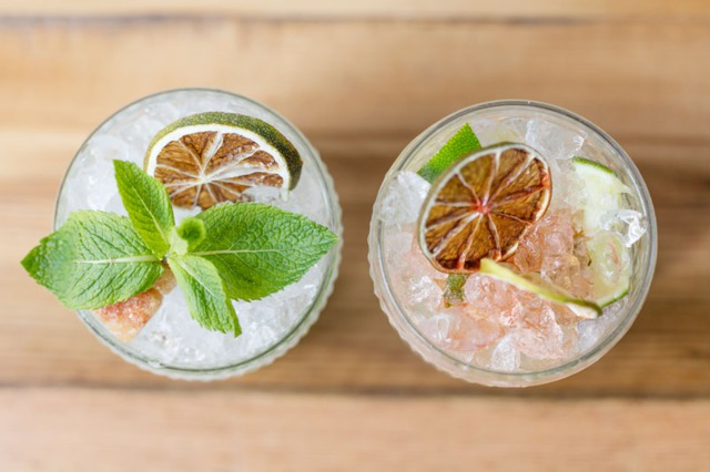 Gin and Tonic Garnishes