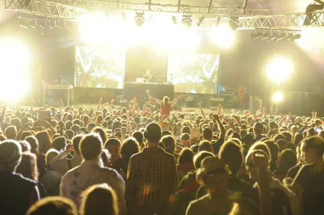 Standon Calling | August News and Events