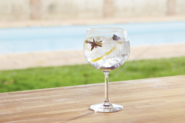 Gin and Tonic | 21st Century Gin and Tonic